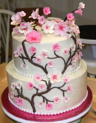 29ee96df49e02fae0ecd190bff81adbb--chinese-cake-japanese-cake.jpg